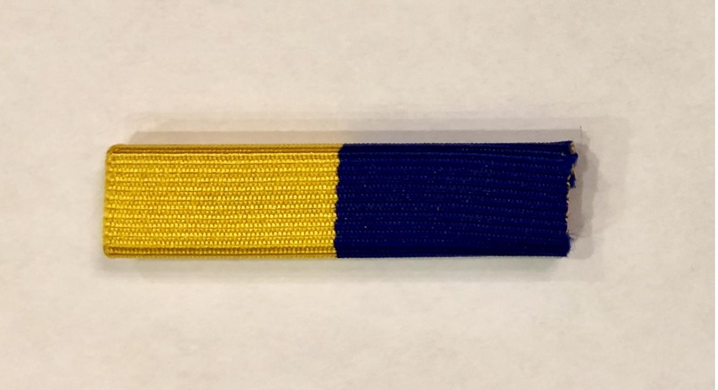 Squadron Level Award Ribbon
